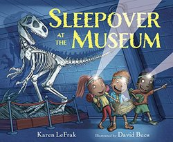 Sleepover at the Museum book