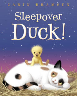 Sleepover Duck! book