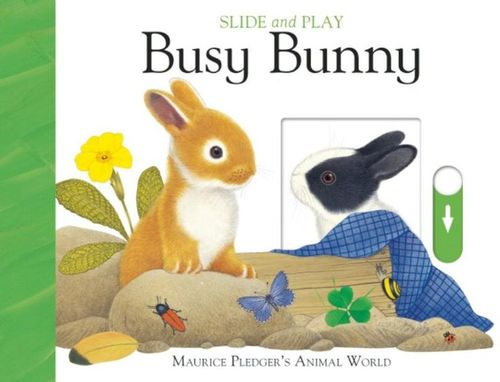 Slide and Play: Busy Bunny book
