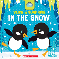 Slide & Surprise in the Snow book