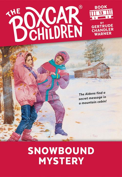 Snowbound Mystery book