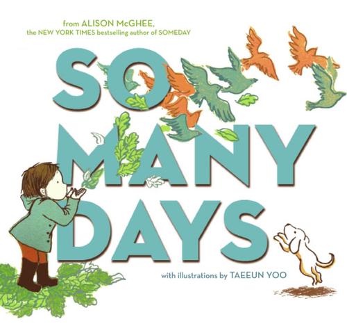So Many Days book