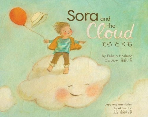 Sora and the Cloud book