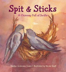 Spit & Sticks book