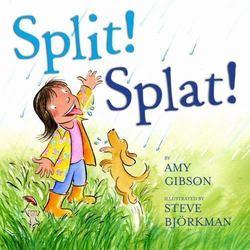 Split! Splat! book