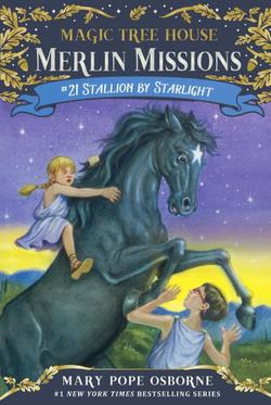 Stallion by Starlight book