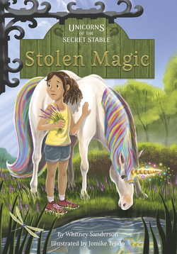 Stolen Magic book