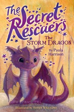 Storm Dragon book