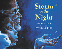 Storm in the Night book
