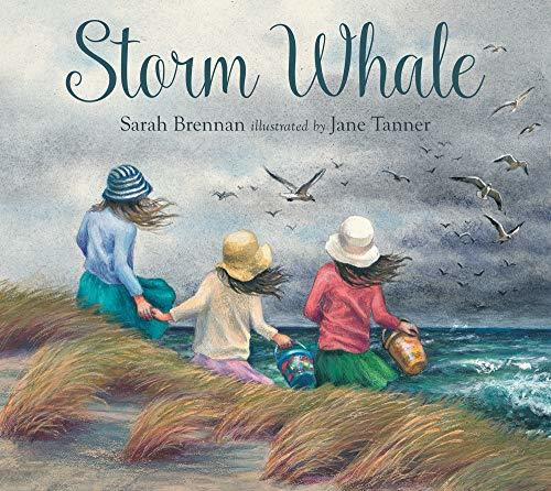 Storm Whale book