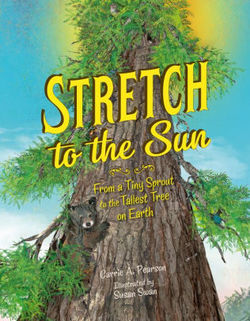 Stretch to the Sun book