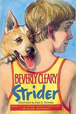 Strider book