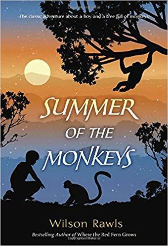 Summer of the Monkeys book