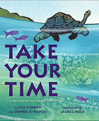 Take Your Time book