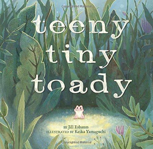 Teeny Tiny Toady book