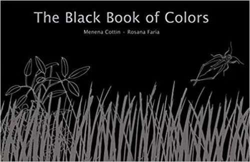 The Black Book of Colors book