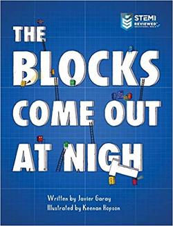 The Blocks Come Out at Night book