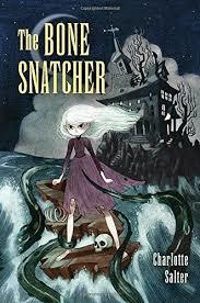 The Bone Snatcher book