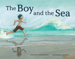The Boy and the Sea book