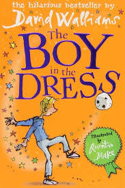 The Boy in the Dress book