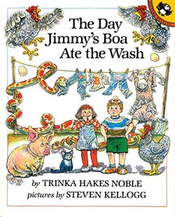 The Day Jimmy's Boa Ate the Wash book