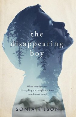 The Disappearing Boy book