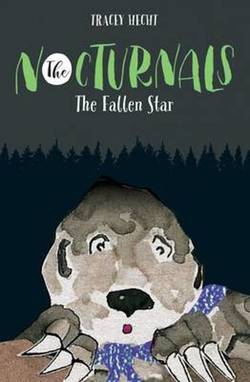 The Fallen Star book