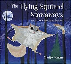 The Flying Squirrel Stowaways book