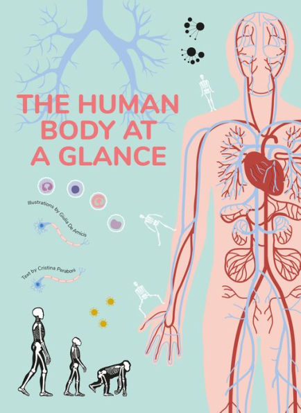 The Human Body at a Glance book