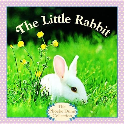 The Little Rabbit book