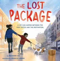 The Lost Package book
