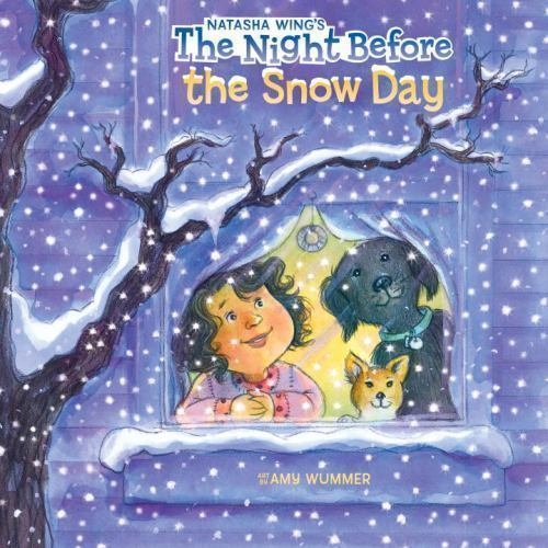 The Night Before the Snow Day book