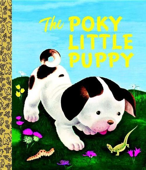 The Poky Little Puppy book