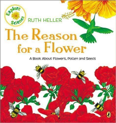 The Reason for a Flower book