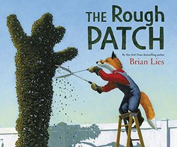 The Rough Patch book
