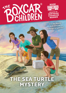 The Sea Turtle Mystery book