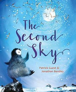 The Second Sky book