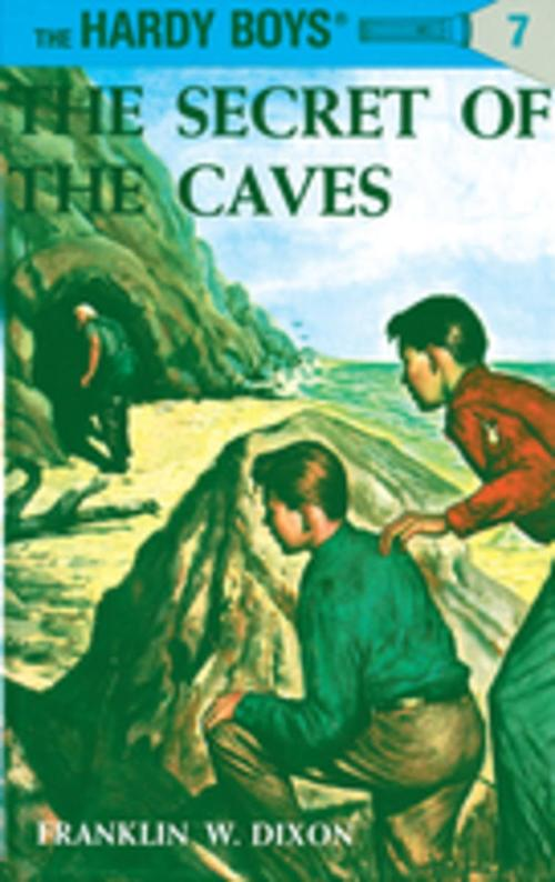 The Secret of the Caves book