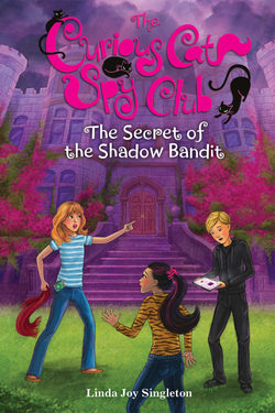 The Secret of the Shadow Bandit Book
