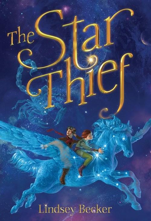 The Star Thief book