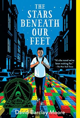 The Stars Beneath Our Feet book