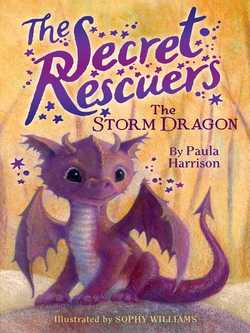 The Storm Dragon book