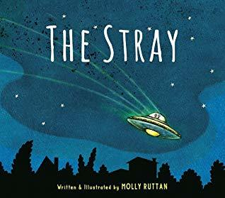 The Stray book
