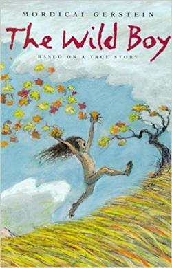 The Wild Boy book