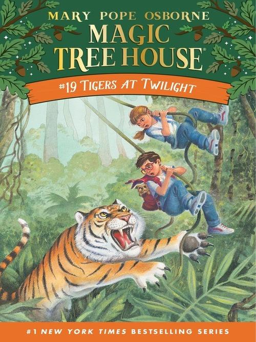 Tigers at Twilight book