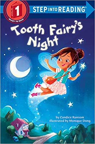 Tooth Fairy's Night Book