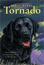 Tornado book