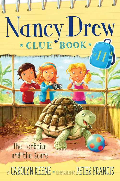 Tortoise And The Scare book