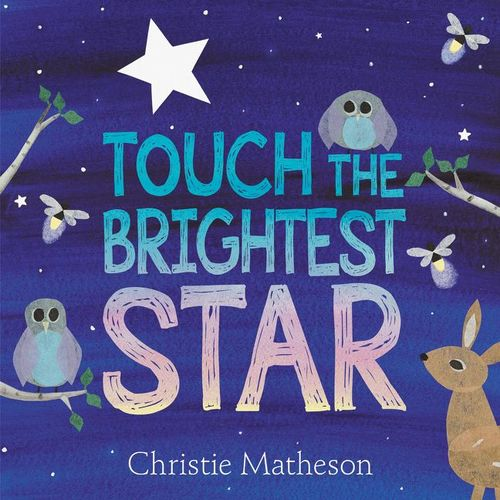 Touch the Brightest Star book