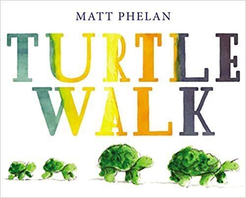 Turtle Walk book